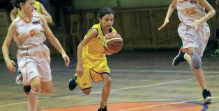 Basketmania4