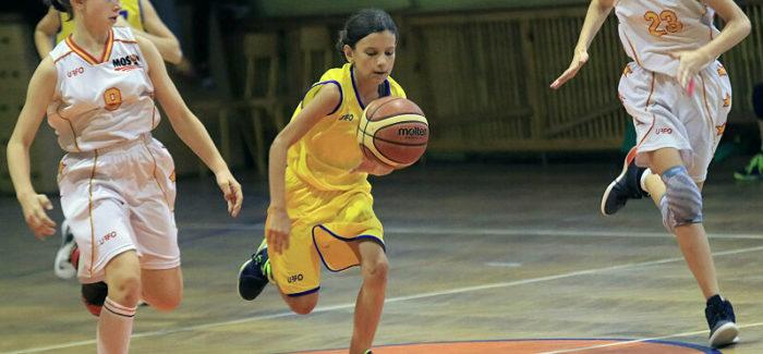 Basketmania w Kolumnie
