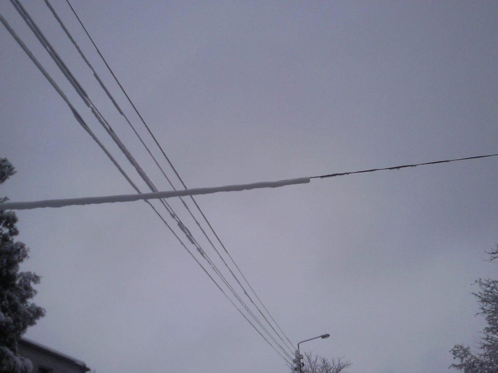śnieżyca12