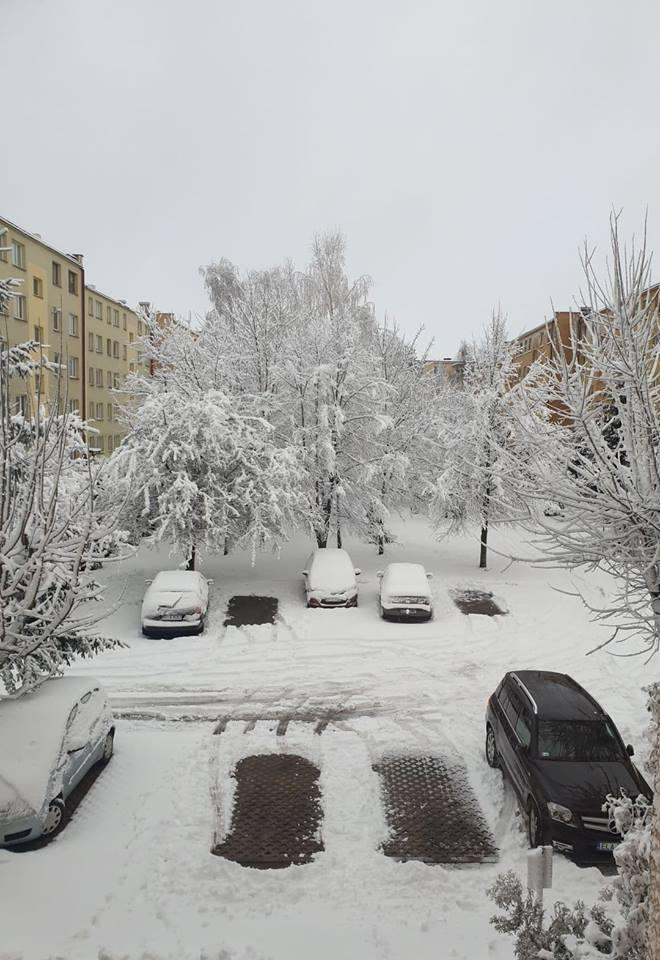 śnieżyca6