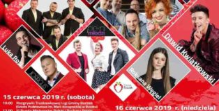 truskawka-2019-plakat-728