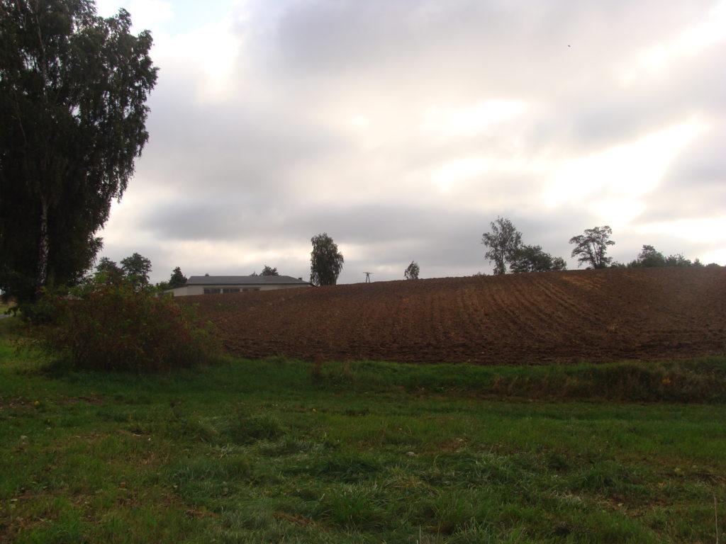 Wzgórze w Młyńsku, gdzie był wiatrak (Bałucz)